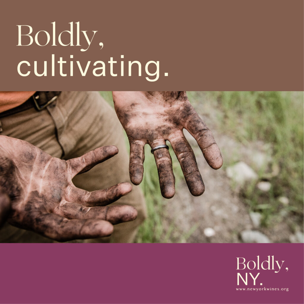 """Farmers hand with dirt on them. Caption reads, """"Boldly, cultivating. Boldly, NY."""""""